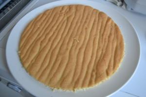 Biscuit coupé en cercle
