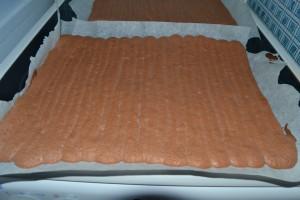 Biscuit chocolat sorti du four