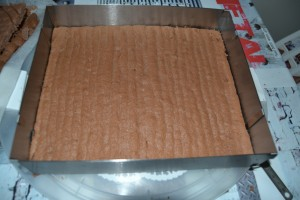 Biscuit chocolat dans rectangle inox