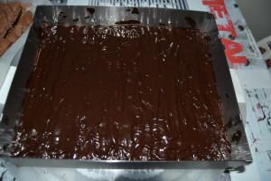 Biscuit chocolat recouvert de chocolat fondu