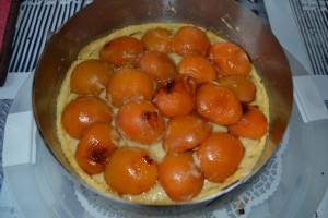 abricots caraméliser poser sur la tarte