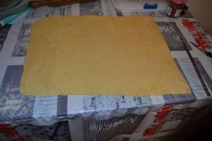 pâte à brioche étaler sur 5 mm d'épaisseur