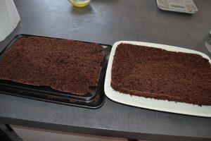 biscuit cacao coupé en 2 dans l'épaisseur