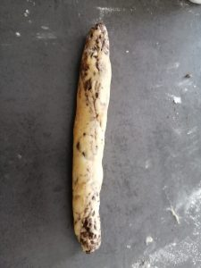 boudin de pâte
